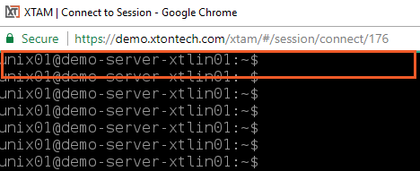 XTAM File Transfer - Active Remote Menu Zone